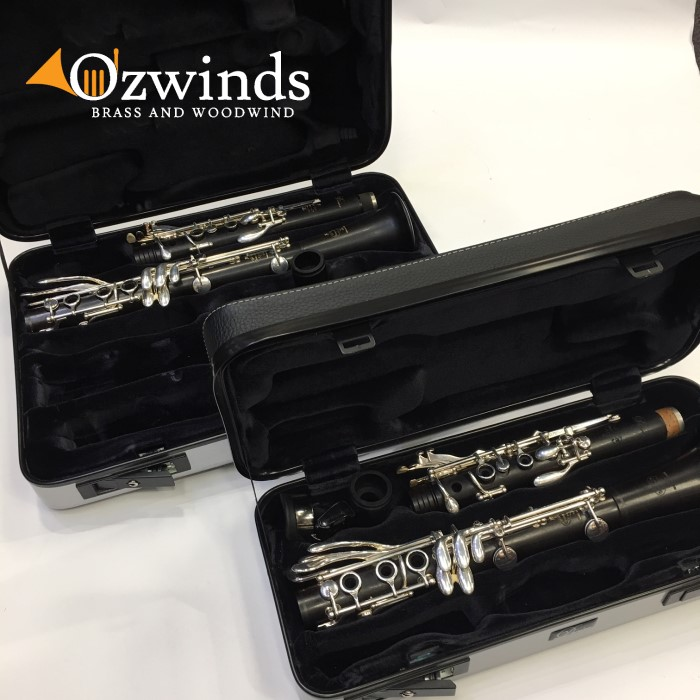 Buffet Divine pair of clarinets Bb & A (USED)